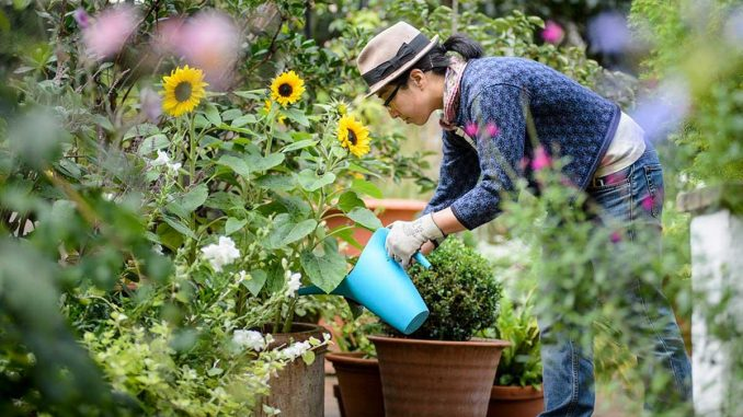 Good Quality Garden Tools Makes Gardening Fun!